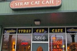 Stray Cat Cafe @ Arlington